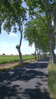 Classic French roads to ride - Nizas
